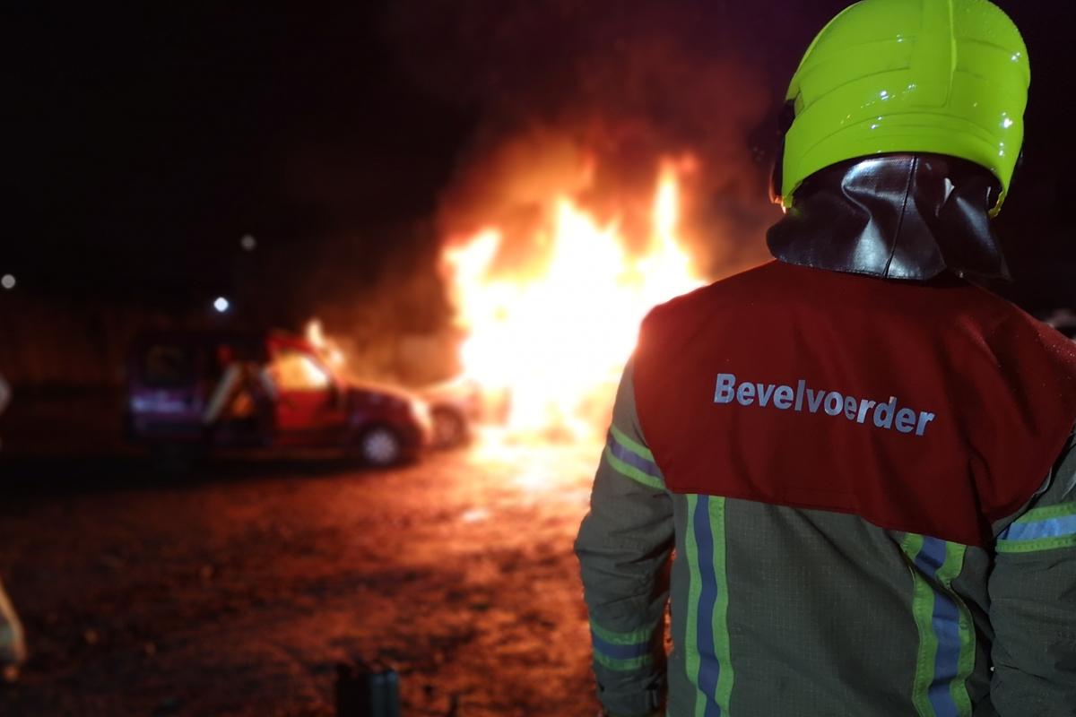 Vuurwerktraining van de politiehonden